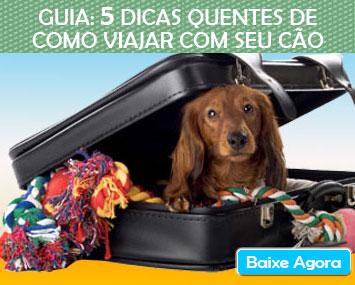 dicas_cao